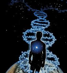 ДНК 3